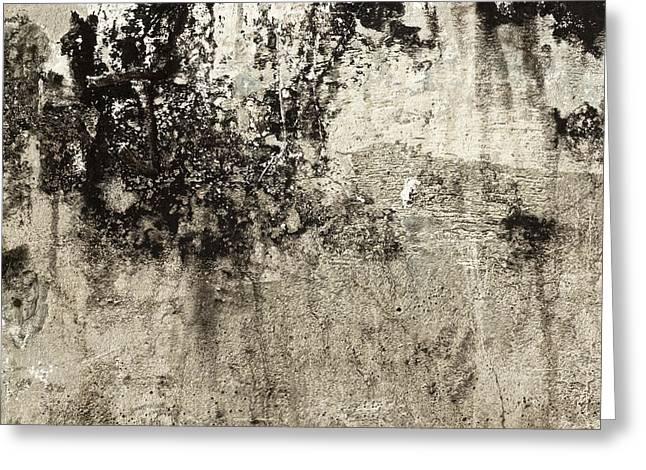 Wall Texture Number 9 Greeting Card by Carol Leigh