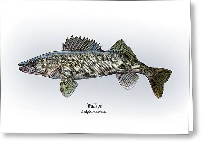 Sportfishing Greeting Cards - Walleye Greeting Card by Ralph Martens