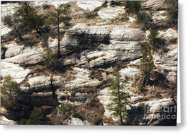 Sinagua Greeting Cards - Walnut Canyon Greeting Card by John Rizzuto