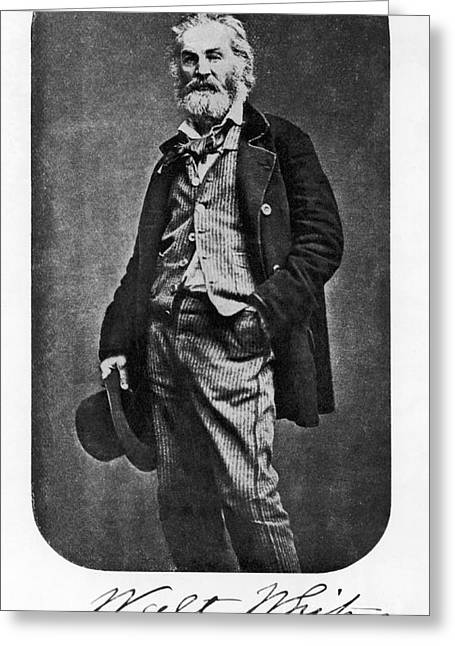 Photo-realism Greeting Cards - Walt Whitman, American Poet Greeting Card by Photo Researchers, Inc.