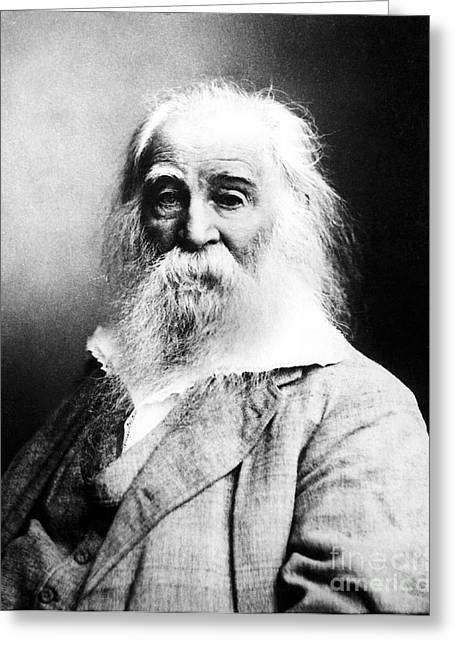 Leaves Of Grass Greeting Cards - Walt Whitman, American Poet Greeting Card by Sylvia Beach Collection, Princeton