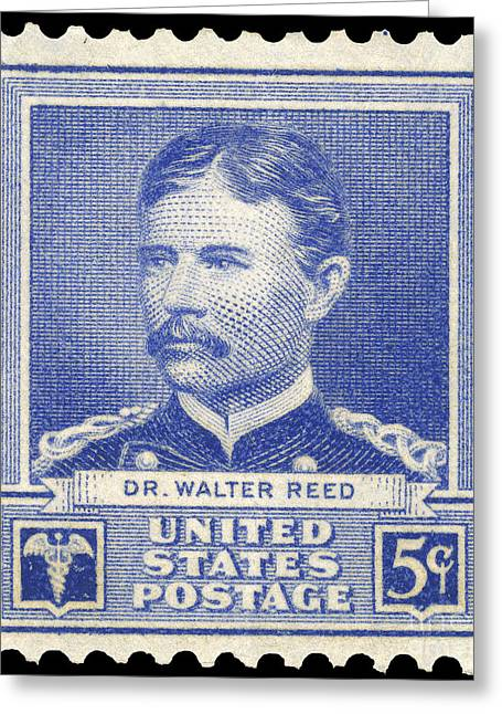 U.s Army Greeting Cards - Walter Reed (1851-1902) Greeting Card by Granger
