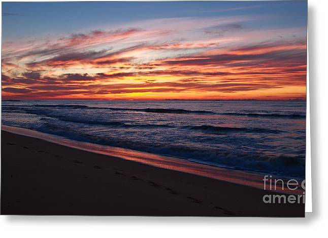 Best Sellers -  - Beach Greeting Cards - Wamberal Sunrise Greeting Card by John Buxton