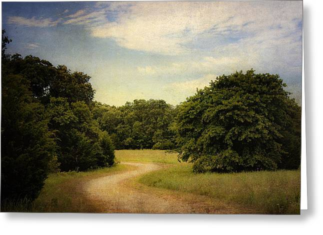Wandering Path II Greeting Card by Tamyra Ayles
