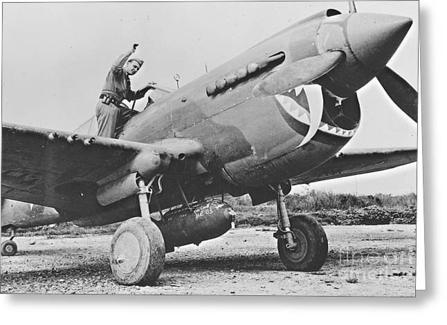 Tail-draggers Greeting Cards - Warhawk P40 1943 Greeting Card by Padre Art