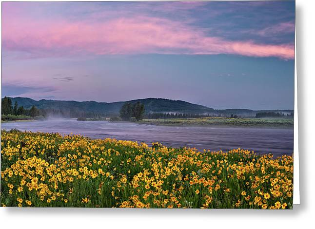 Balsam Greeting Cards - Warm River Spring Sunrise Greeting Card by Leland D Howard