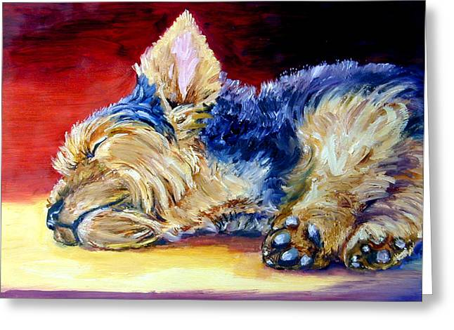 Warm Spot - Yorkshire Terrier Greeting Card by Lyn Cook