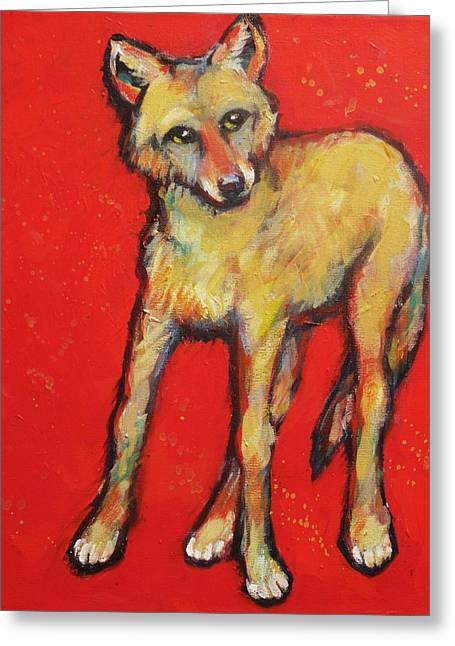 Prairie Style Greeting Cards - Wary Coyote Greeting Card by Carol Suzanne Niebuhr