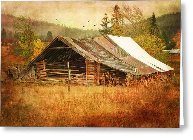 Shed Digital Art Greeting Cards - Was Once a Dream Greeting Card by Mary Timman