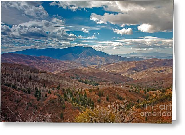Haybale Greeting Cards - Wasatch Range  Greeting Card by Robert Bales