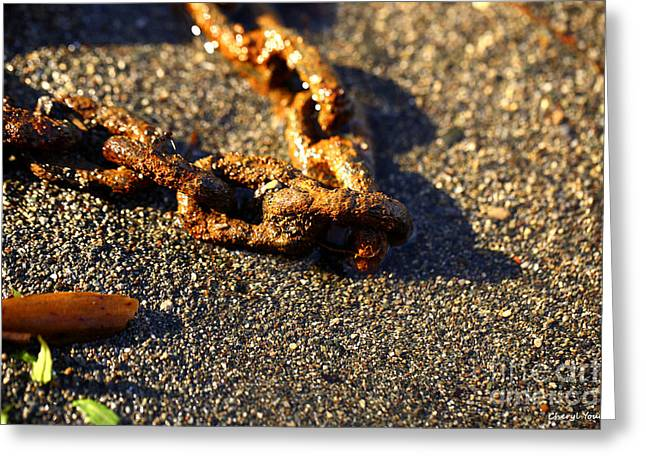 Washed Ashore Greeting Card by Cheryl Young