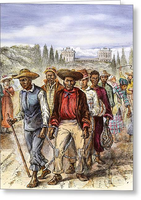 African-american Greeting Cards - WASHINGTON: SLAVERY, c1820 Greeting Card by Granger