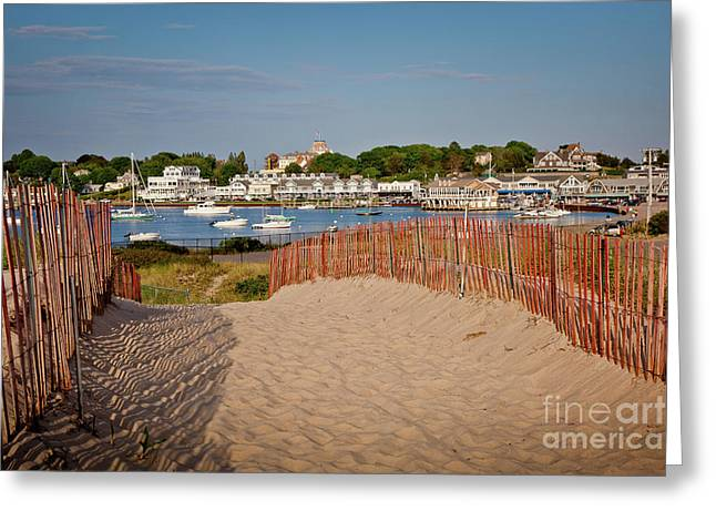Napatree Point Preserve Greeting Cards - Watch Hill Harbor Greeting Card by Susan Cole Kelly