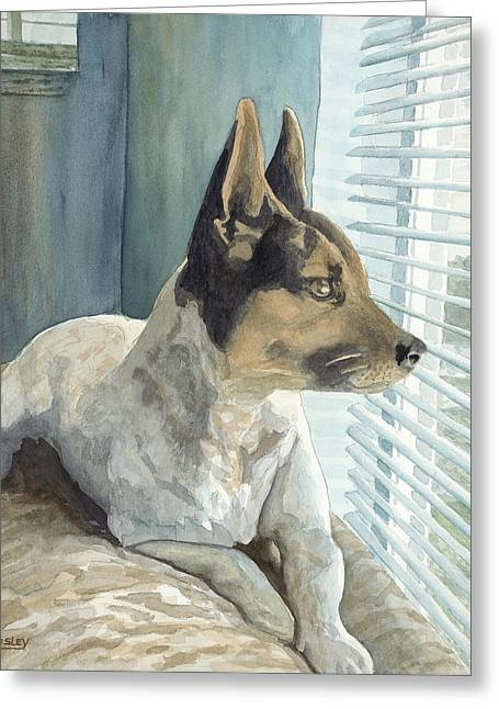 Watchdog Greeting Cards - Watchdog Greeting Card by Don Bosley