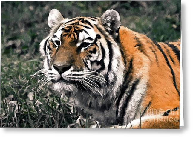 Watchful Bengal Tiger - Brush Stroke Greeting Card by Darcy Michaelchuk