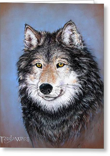 North Pastels Greeting Cards - Watchful Gaze Greeting Card by Tanja Ware