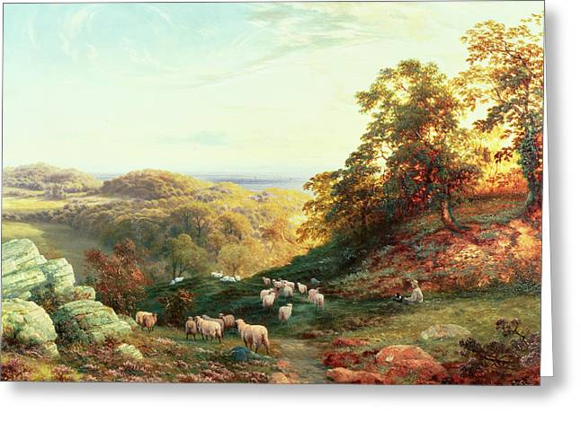 Cole Paintings Greeting Cards - Watching the Flock Greeting Card by George Vicat Cole