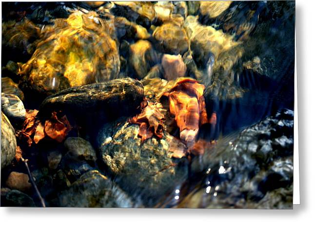 Babbling Greeting Cards - Water and Light Greeting Card by Susan Moore