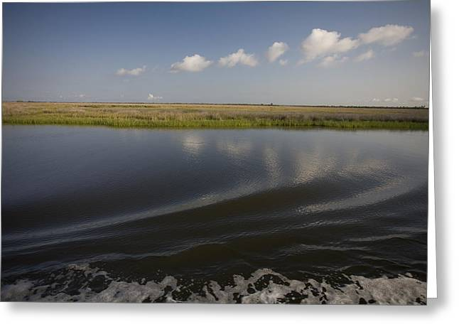 Water And Marsh In Plaquemines Parish Greeting Card by Tyrone Turner
