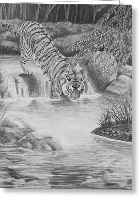 Photorealism Greeting Cards - Water Cat Greeting Card by Heather Ward