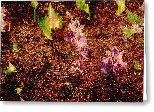 Abstract Digital Photographs Greeting Cards - Water Flowers Vietnam Greeting Card by Skip Nall