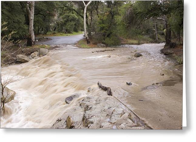 Floods Greeting Cards - Water Flowing In The North Fork Greeting Card by Rich Reid