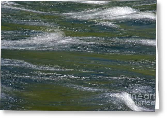 Water Impression 2 Greeting Card by Catherine Lau