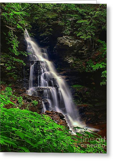 Beautiful Creek Greeting Cards - Water in Motion Greeting Card by Nick Zelinsky