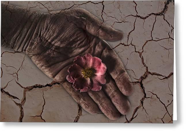 Realization Greeting Cards - Water Is Life Greeting Card by Joachim G Pinkawa