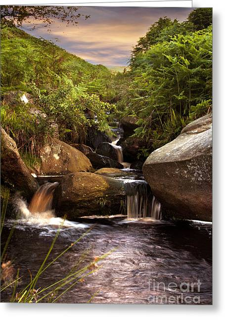 Water Is Life Greeting Card by Nigel Hatton