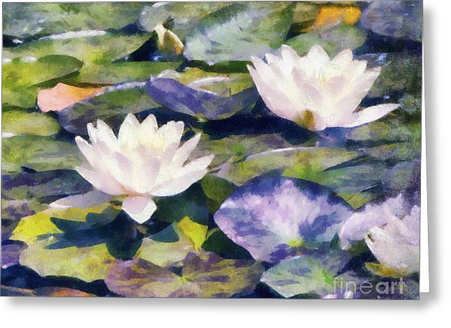 Water Lilly Greeting Cards - Water Lilies Greeting Card by Betsy Foster Breen