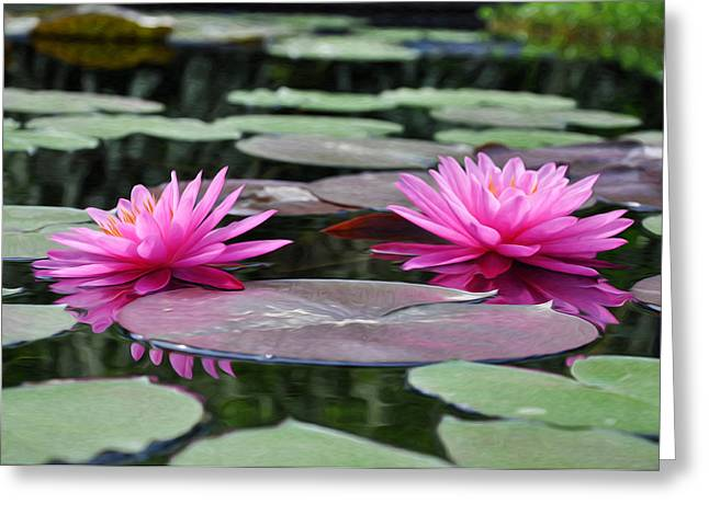 Water Lilly Digital Art Greeting Cards - Water Lilies Greeting Card by Bill Cannon