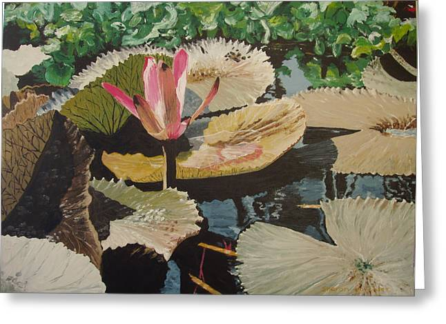 St Petersburg Florida Paintings Greeting Cards - Water Lily 3 Greeting Card by Sharon  De Vore
