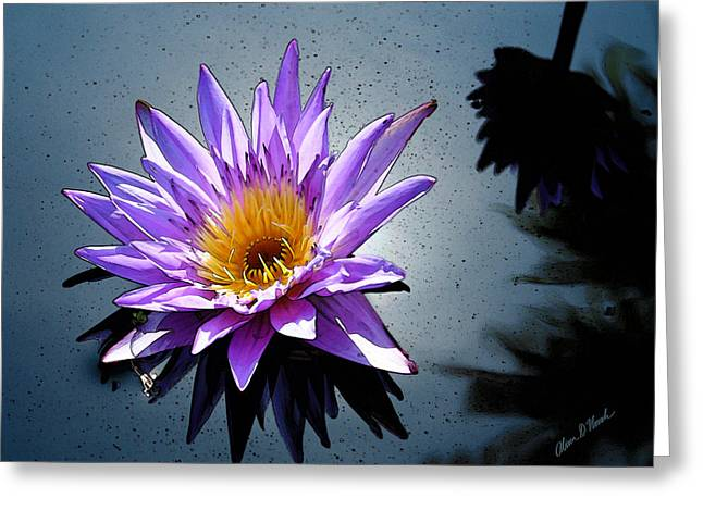 Water Garden Pyrography Greeting Cards - Water Lily Dream at Fairchild 2 Greeting Card by Olivia Novak
