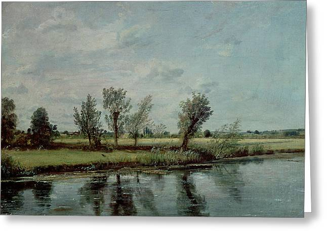 Constable Paintings Greeting Cards - Water Meadows near Salisbury Greeting Card by John Constable