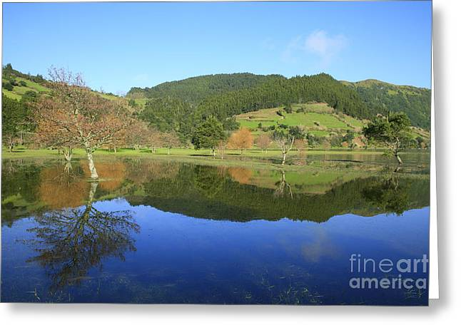 Flooding Greeting Cards - Water mirror Greeting Card by Gaspar Avila