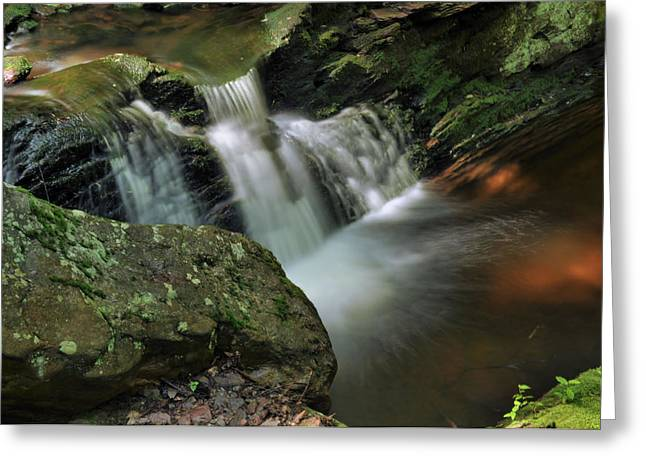 Stokes State Forest Greeting Cards - Water Movement-Tillman Ravine Greeting Card by Stephen  Vecchiotti