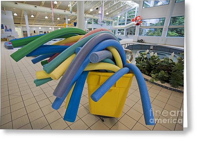 Noodles Greeting Cards - Water Noodles at a Public Swimming Pool Greeting Card by Marlene Ford