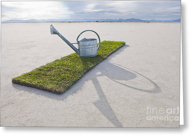 Casting A Shadow Greeting Cards - Water Pail on Strip of Grass Greeting Card by Thom Gourley/Flatbread Images, LLC