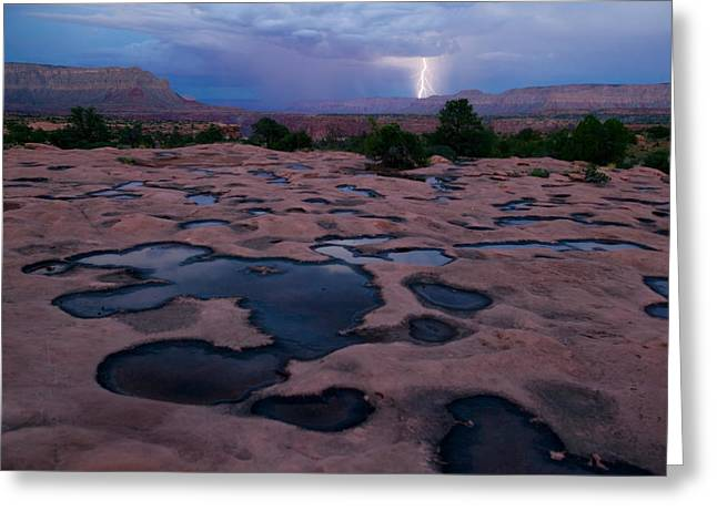 Esplanade Outdoors Greeting Cards - Water Puddled In The Esplanade, A Rock Greeting Card by Michael Nichols