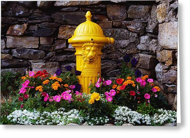 Garden Statuary Greeting Cards - Water Pump, Ireland Greeting Card by The Irish Image Collection