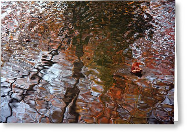 Indiana Autumn Greeting Cards - Water Serenade Greeting Card by Ed Smith