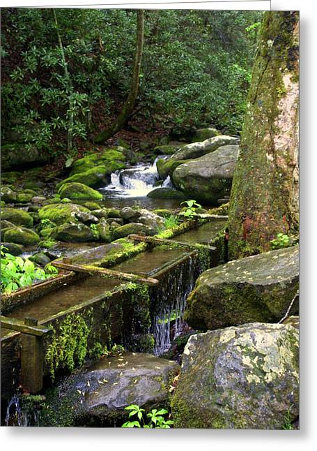 Great Smokey Mountains Greeting Cards - Water Sluice  Greeting Card by Marty Koch