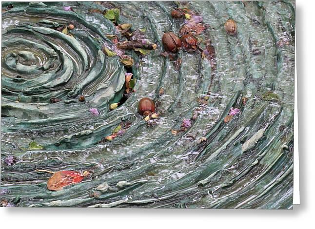 Dallas Arboretum Greeting Cards - Water Spiral  Greeting Card by Douglas Barnard