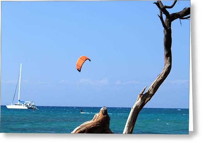 Water Sports in Hawaii 2 Greeting Card by Karen Nicholson