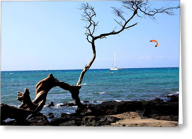 Hospital Theme Greeting Cards - Water Sports in Hawaii Greeting Card by Karen Nicholson