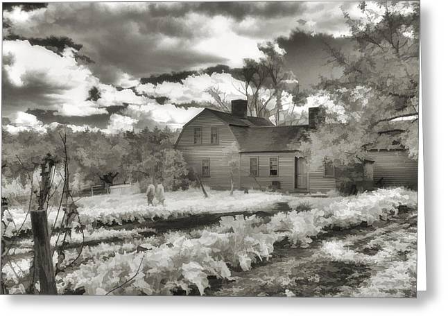 Sturbridge Village Greeting Cards - Watercolor in Black and White Greeting Card by Joann Vitali