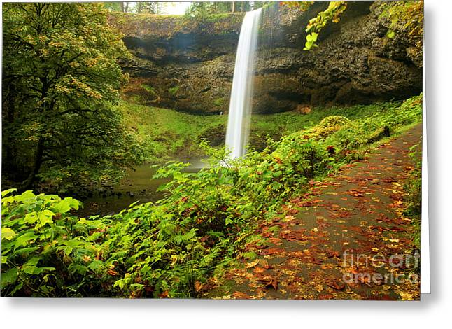 Silver Falls State Park Greeting Cards - Waterfall Along The Trail Greeting Card by Adam Jewell