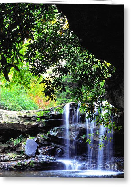 Mccoy Greeting Cards - Waterfall and Rhododendron Greeting Card by Thomas R Fletcher