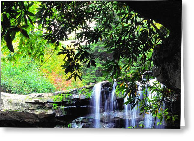 Waterfall and Rhododendron Greeting Card by Thomas R Fletcher